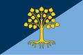 Drapeau de la République d'Équaria.png
