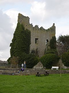 Dromineer Village in Munster, Ireland