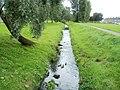 Ducks on Porset Brook, Caerphilly - geograph.org.uk - 2677181.jpg