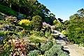 Dunedin Botanic Garden 13.jpg