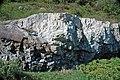 Dunham Dolomite (Lower Cambrian; Route 2 roadcut, southeast of the Lamoille River bridge, Vermont, USA) 3.jpg