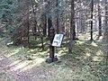 Dusetų sen., Lithuania - panoramio (97).jpg