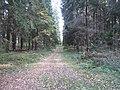 Dusetų sen., Lithuania - panoramio (99).jpg