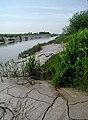 Dutch River, Airmyn - geograph.org.uk - 456289.jpg