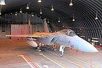 Eagle - RAF Lakenheath 2006 (2380977718).jpg