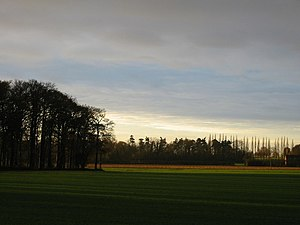 Wymondham College - Early morning sunlight over fields