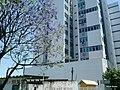 Edificio D'Argentum - Rua Gonçalves Dias, 66 - Brasil RS Canoas Centro - panoramio.jpg