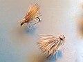 Elk Hair Caddis dry flies.jpg