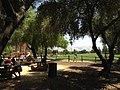 Emma Prusch Farm Park Playground.jpg