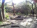 Engadine NSW 2233, Australia - panoramio (173).jpg