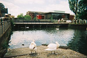 The Engine Shed - Engine Shed, looking along the River Witham