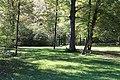Englischer Garten Herbst-12.jpg