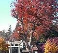 Enzankamiozo, Koshu, Yamanashi Prefecture 404-0042, Japan - panoramio.jpg