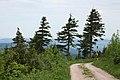 Erzgebirge - panoramio (20).jpg