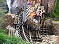 Expedition Everest 30.jpg