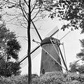 Exterieur OVERZICHT - Brouwershaven - 20296710 - RCE.jpg