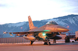 A US Air Force F-16 Fighting Falcon of the 31st Fighter Wing based at Aviano.