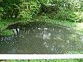 FFH NS Obere Hunte BfN 3616-301 WDPA 555518955 EEA DE3616301 12.jpg