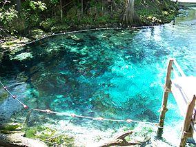 Fanning Springs Park springs01.jpg