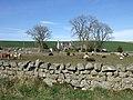 Farmhouse at Milton of Finnercy - geograph.org.uk - 387880.jpg