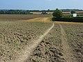 Farmland, Odiham - geograph.org.uk - 956290.jpg