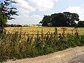 Farmland near Hazelhanger Farm - geograph.org.uk - 39210.jpg