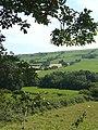 Farmland near Tregaron, Ceredigion - geograph.org.uk - 901997.jpg