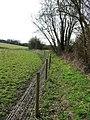 Fence Line - geograph.org.uk - 1765875.jpg