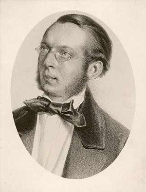 Ferdinand von Hochstetter - Ferdinand von Hochstetter