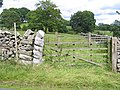 Field gate above Kirkby Malham - geograph.org.uk - 719206.jpg