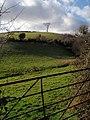 Field in Westerland valley - geograph.org.uk - 1184300.jpg