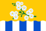 Flag of Leninsk.png