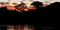 Flickr - ggallice - Pantanal sunset.jpg