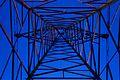 Flickr - law keven - Electric Blue......jpg