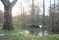 Flooding by the River Len, Mote Park - geograph.org.uk - 1610482.jpg