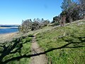 Folsom Lake Trail - panoramio.jpg