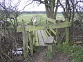 Footbridge - geograph.org.uk - 350963.jpg