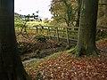 Footbridge on the concessionary footpath - geograph.org.uk - 1573386.jpg