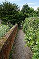 Footpath and churchyard wall at Boreham, Essex, England.jpg
