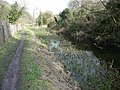 Footpath beside the Thames and Severn Canal - geograph.org.uk - 1776206.jpg