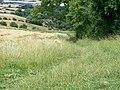 Footpath crosses bridleway - geograph.org.uk - 1988183.jpg