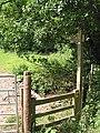 Footpath crosses the stream, Aston Ingham - geograph.org.uk - 492836.jpg