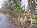 Footpath on Back Lane - geograph.org.uk - 1131004.jpg