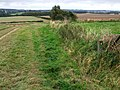 Footpath to Bag Enderby - geograph.org.uk - 577568.jpg