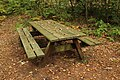 Forêt Départementale de Méridon à Chevreuse le 29 septembre 2017 - 17.jpg