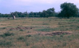 National Register of Historic Places listings in Stanley County, South Dakota - Image: Fort Pierre Chouteau Site