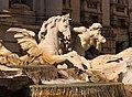 Fountain Trevi detail Rome.jpg