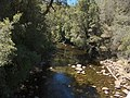 Franklin River 20171121-025.jpg