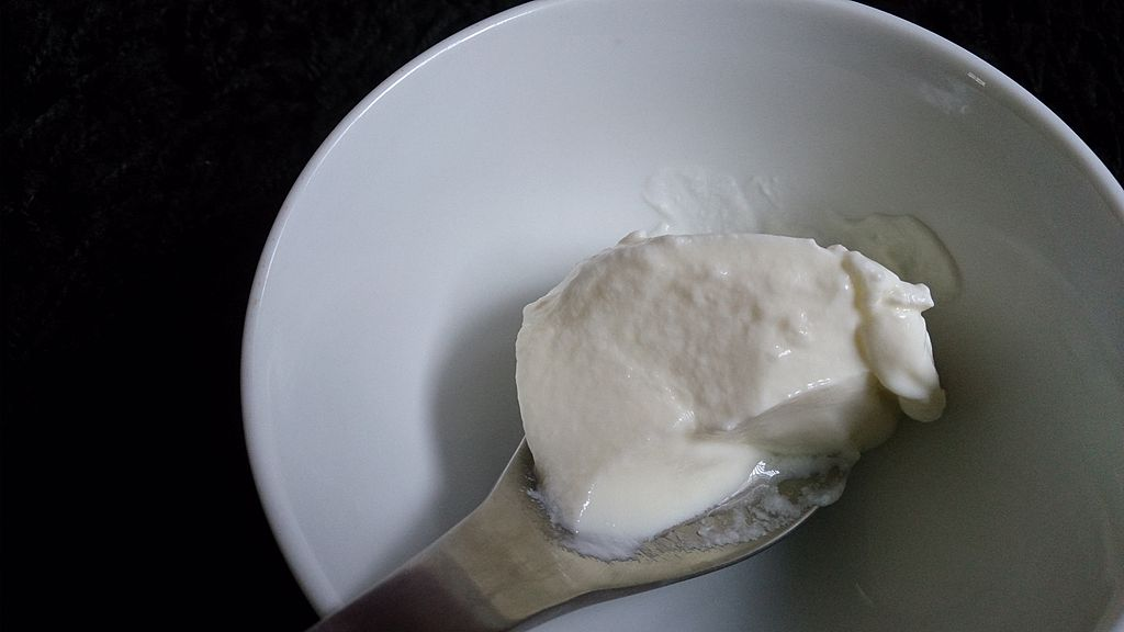 image of greek yogurt