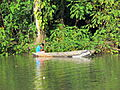 Frio river, Costa Rica-1.jpg